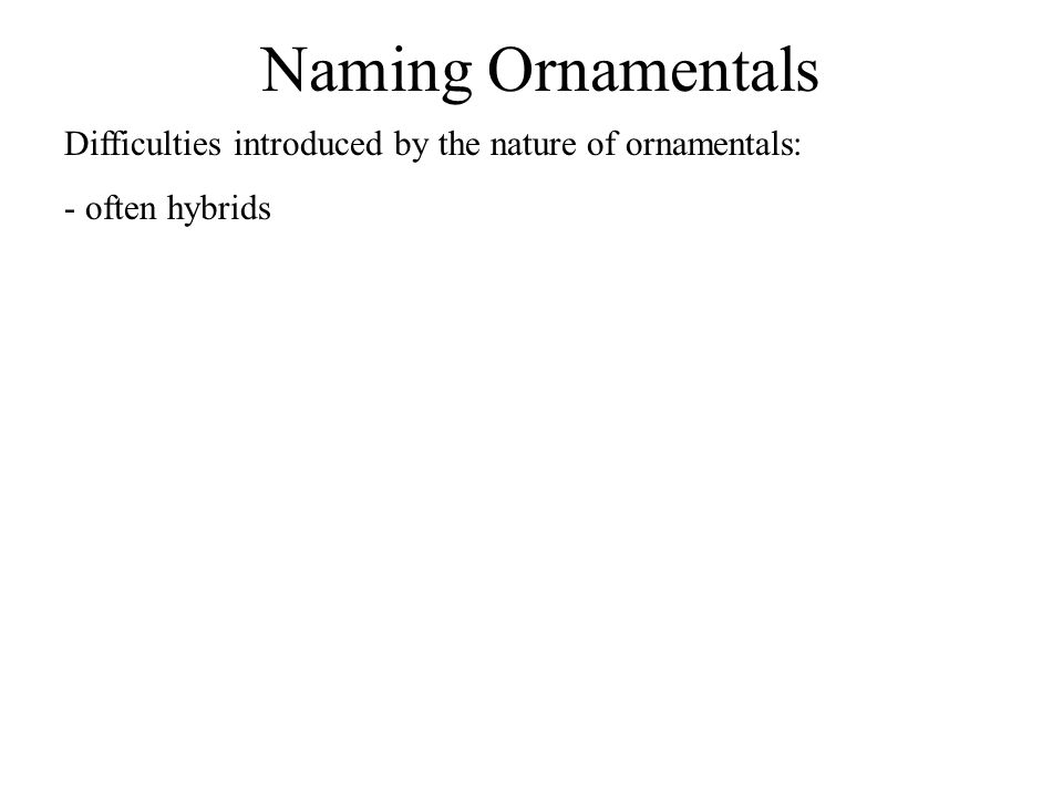 Naming Ornamentals Difficulties introduced by the nature of ornamentals: - often hybrids - many are sterile, propagated vegetatively - mutants with striking features – propagated vegetatively to retain features - marketing International Code of Horticultural Nomenclature – sets of rules governing assignment of cultivar names Some widely grown plants may have a registry of cultivar names