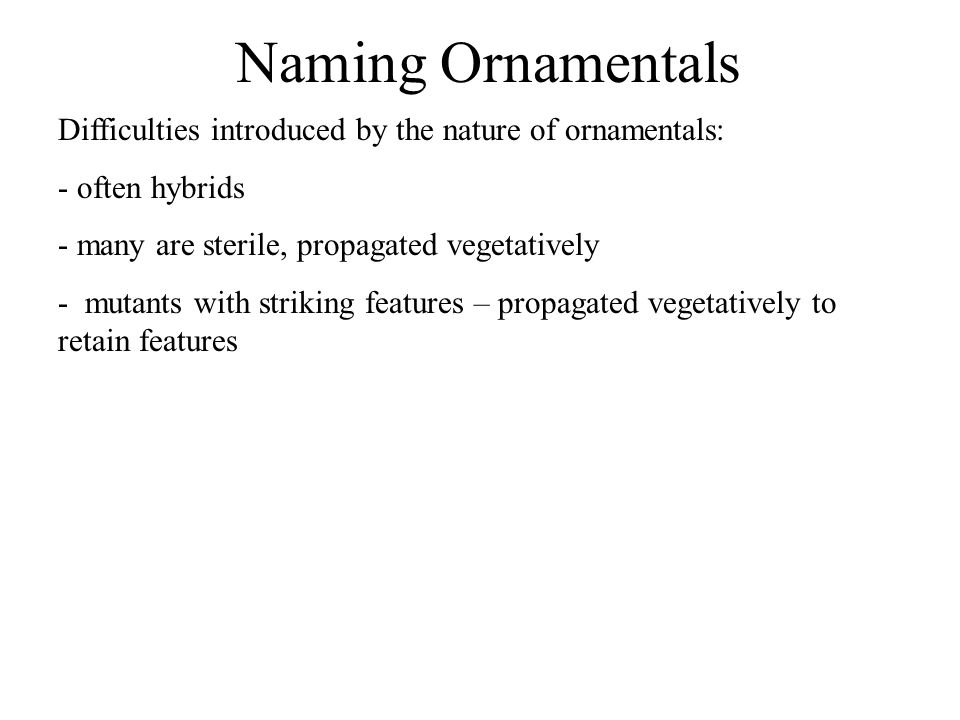 Naming Ornamentals Difficulties introduced by the nature of ornamentals: - often hybrids - many are sterile, propagated vegetatively - mutants with st
