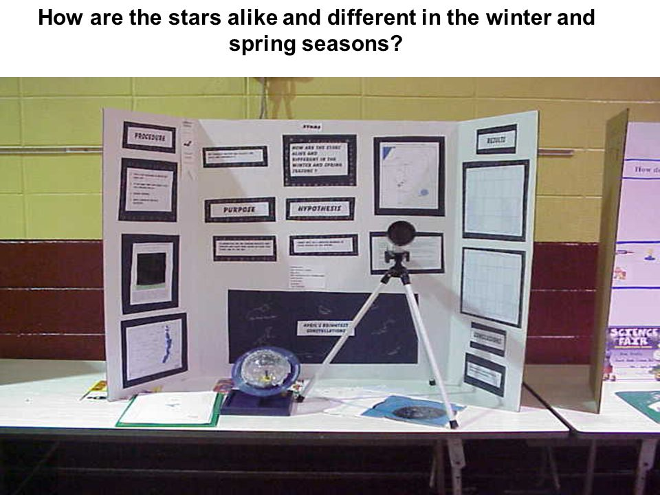 How are the stars alike and different in the winter and spring seasons?