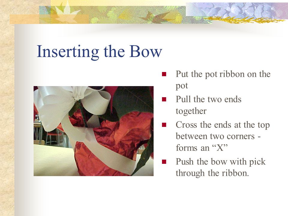 The ribbon around the pot Select the ribbon color Cut 24-25 inches of ribbon Diagonally cut the edges of the ribbon Wrap it around the pot and foil to be sure it is long enough