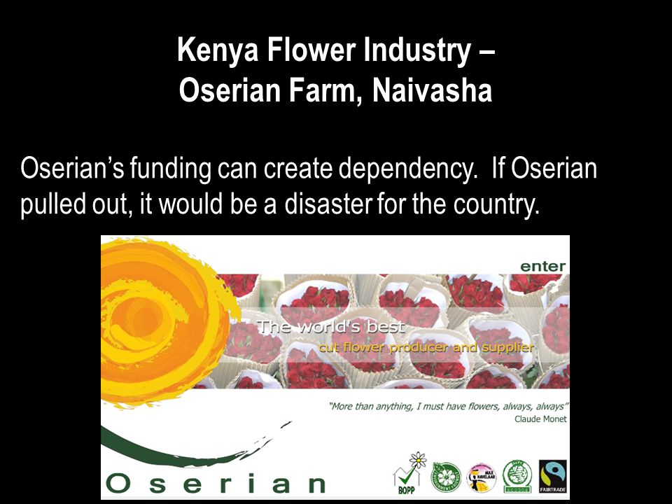 Kenya Flower Industry – Oserian Farm, Naivasha Oserians funding can create dependency. If Oserian pulled out, it would be a disaster for the country.