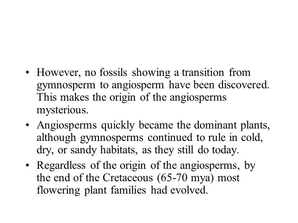 However, no fossils showing a transition from gymnosperm to angiosperm have been discovered. This makes the origin of the angiosperms mysterious. Angi
