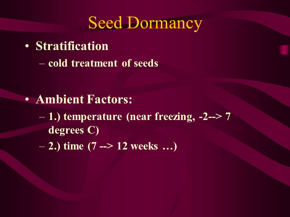 Seed Dormancy Stratification –cold treatment of seeds Ambient Factors: –1.) temperature (near freezing, -2--> 7 degrees C) –2.) time (7 --> 12 weeks …