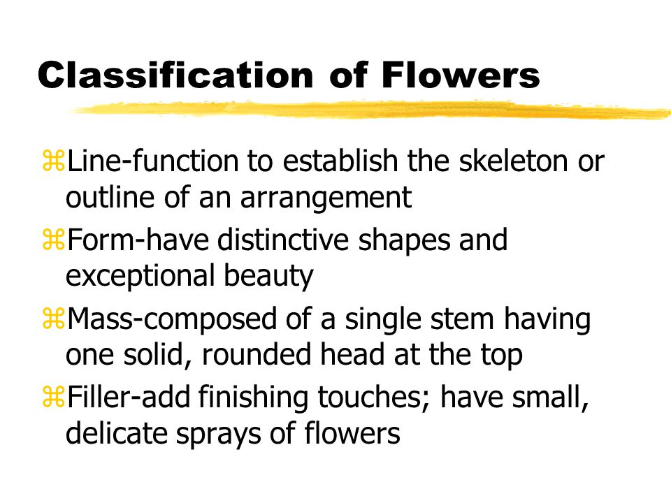 Classification of Flowers zLine-function to establish the skeleton or outline of an arrangement zForm-have distinctive shapes and exceptional beauty zMass-composed of a single stem having one solid, rounded head at the top zFiller-add finishing touches; have small, delicate sprays of flowers