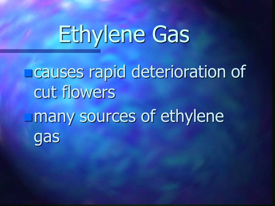 Ethylene Gas n naturally occurring gas in flowers that speed maturity