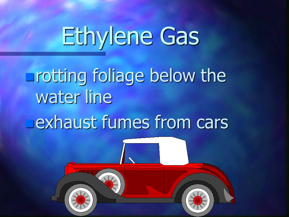 Ethylene Gas n fruit, especially apples n diseased or injured flowers