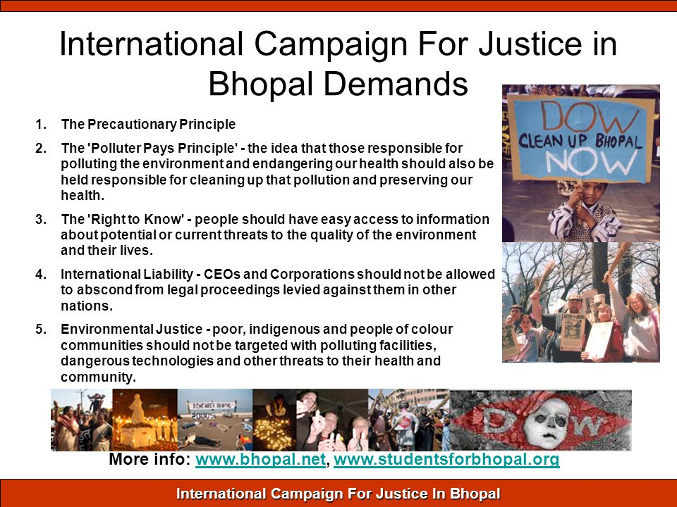 International Campaign For Justice In Bhopal International Campaign For Justice in Bhopal Demands 1.The Precautionary Principle 2.The Polluter Pays Principle - the idea that those responsible for polluting the environment and endangering our health should also be held responsible for cleaning up that pollution and preserving our health.