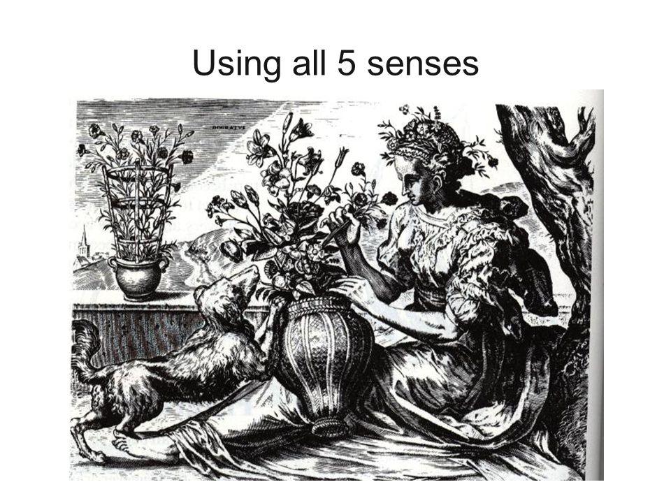 Using all 5 senses