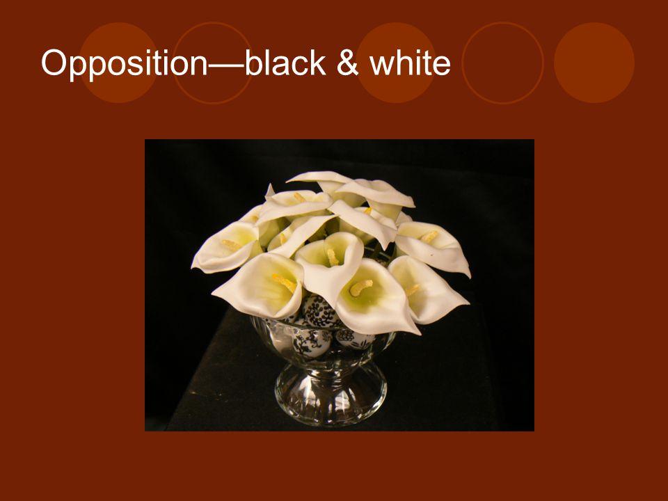 Oppositionblack & white