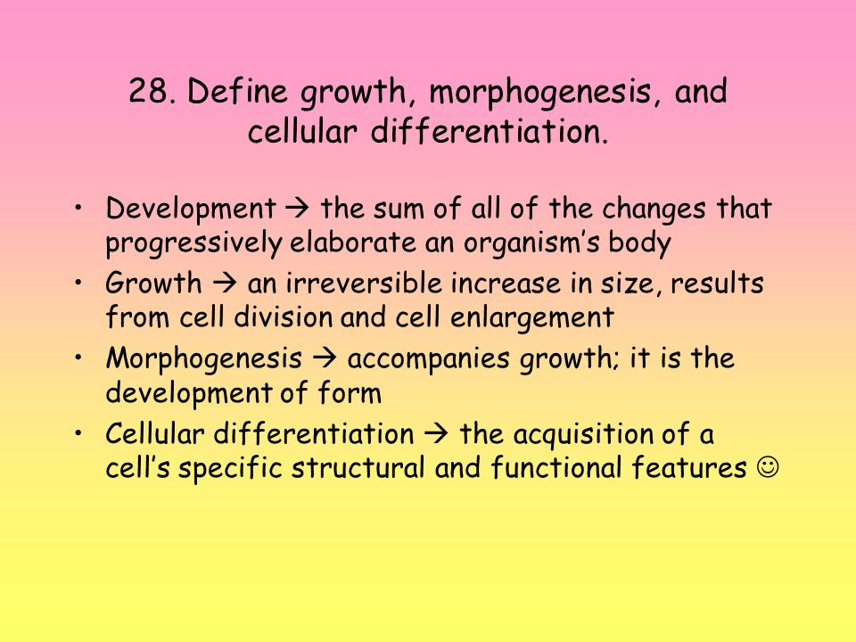 28.Define growth, morphogenesis, and cellular differentiation.