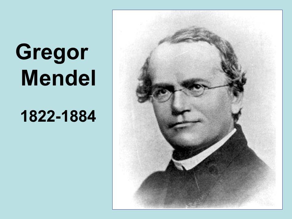 Gregor Mendel 1822-1884