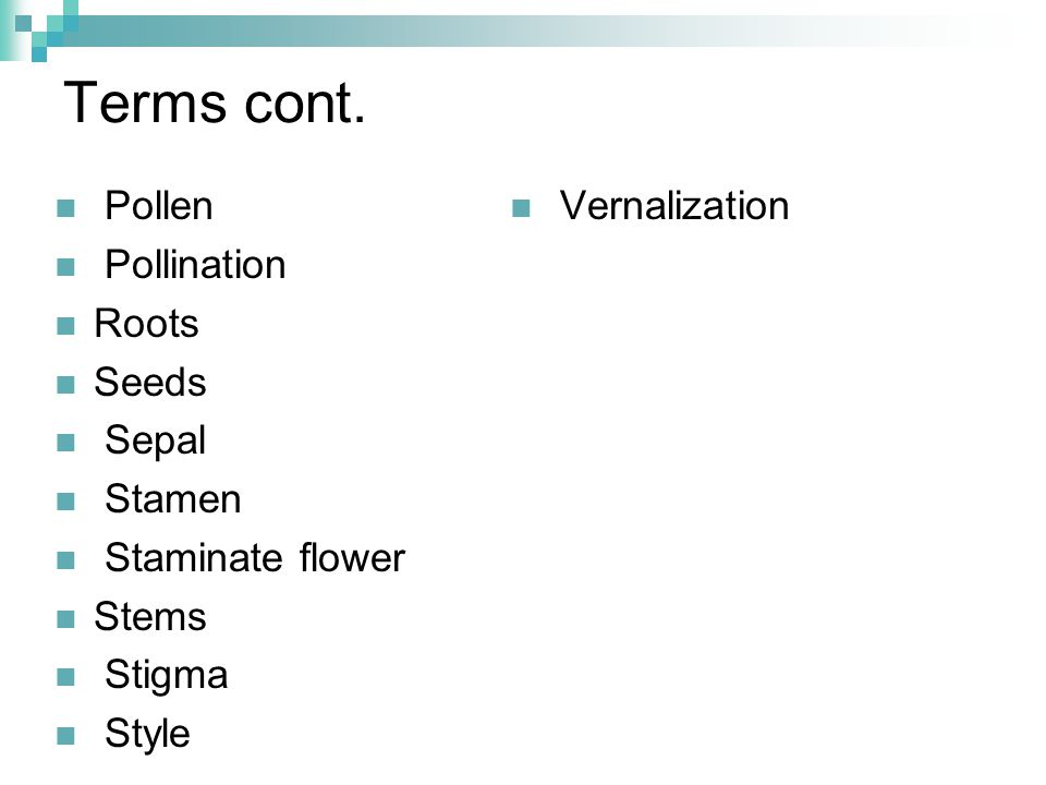 Terms cont. Pollen Pollination Roots Seeds Sepal Stamen Staminate flower Stems Stigma Style Vernalization