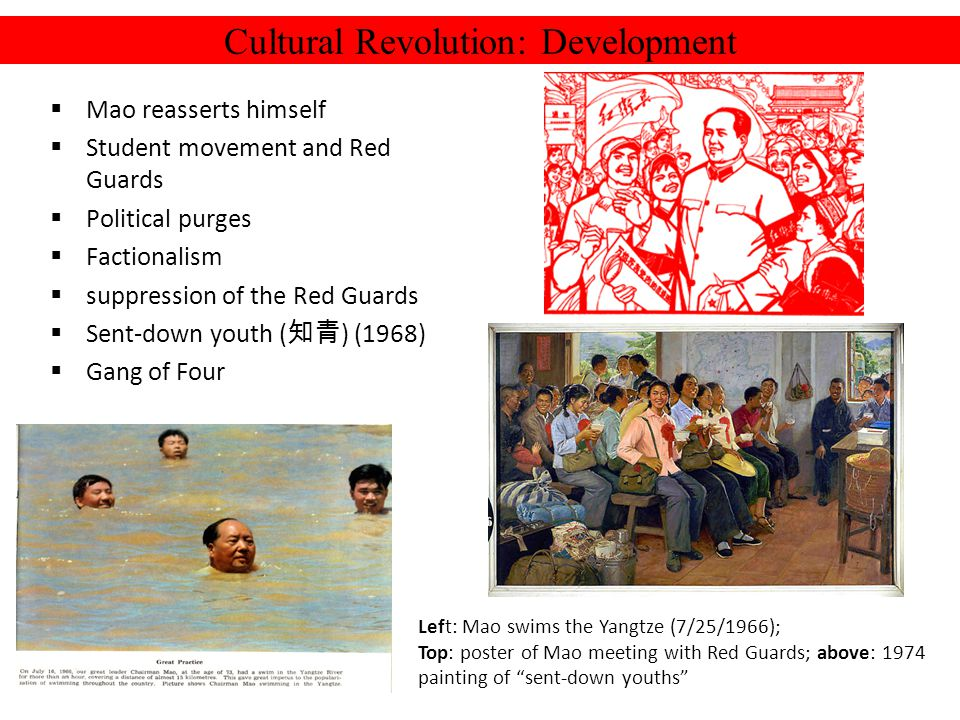Cultural Revolution: Development Mao reasserts himself Student movement and Red Guards Political purges Factionalism suppression of the Red Guards Sen