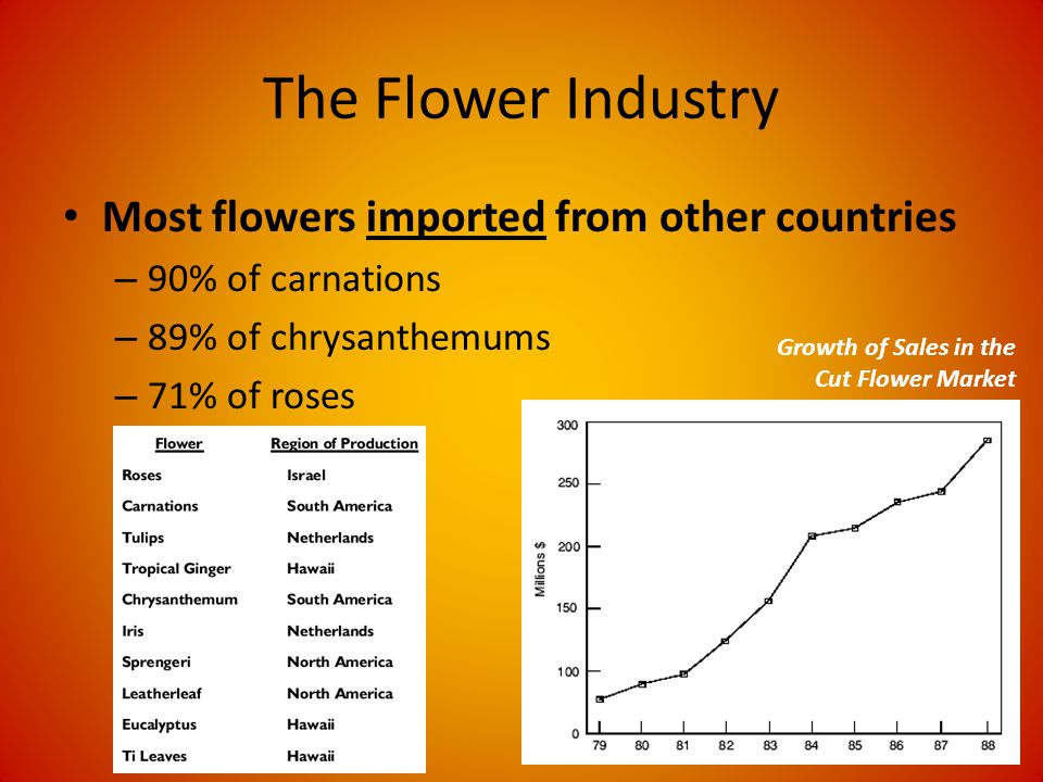 The Flower Industry Most flowers imported from other countries – 90% of carnations – 89% of chrysanthemums – 71% of roses Growth of Sales in the Cut Flower Market