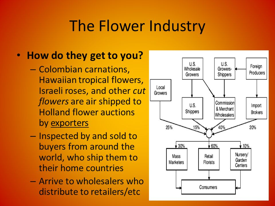 The Flower Industry How do they get to you.