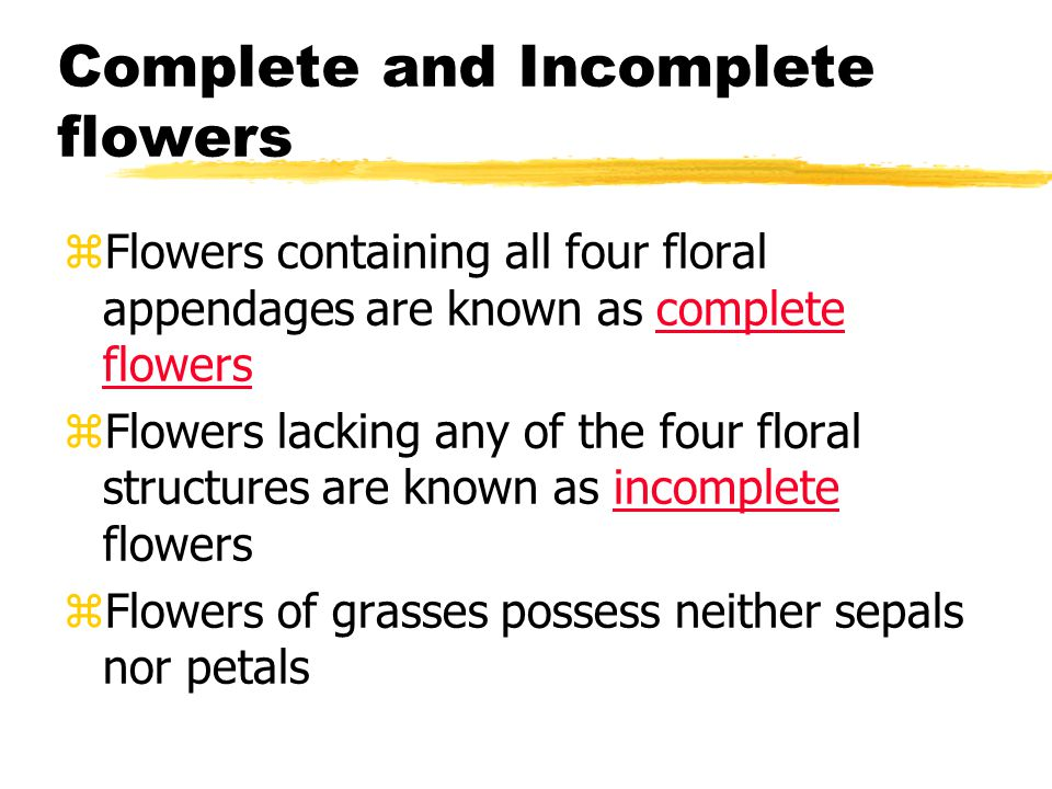 Perfect and Imperfect Flowers zPerfect flowers have both stamens and carpels zImperfect flowers lack either stamens or carpels *Unisexual flowers *Male flowers called staminate *Female flowers called pistillate or carpellate