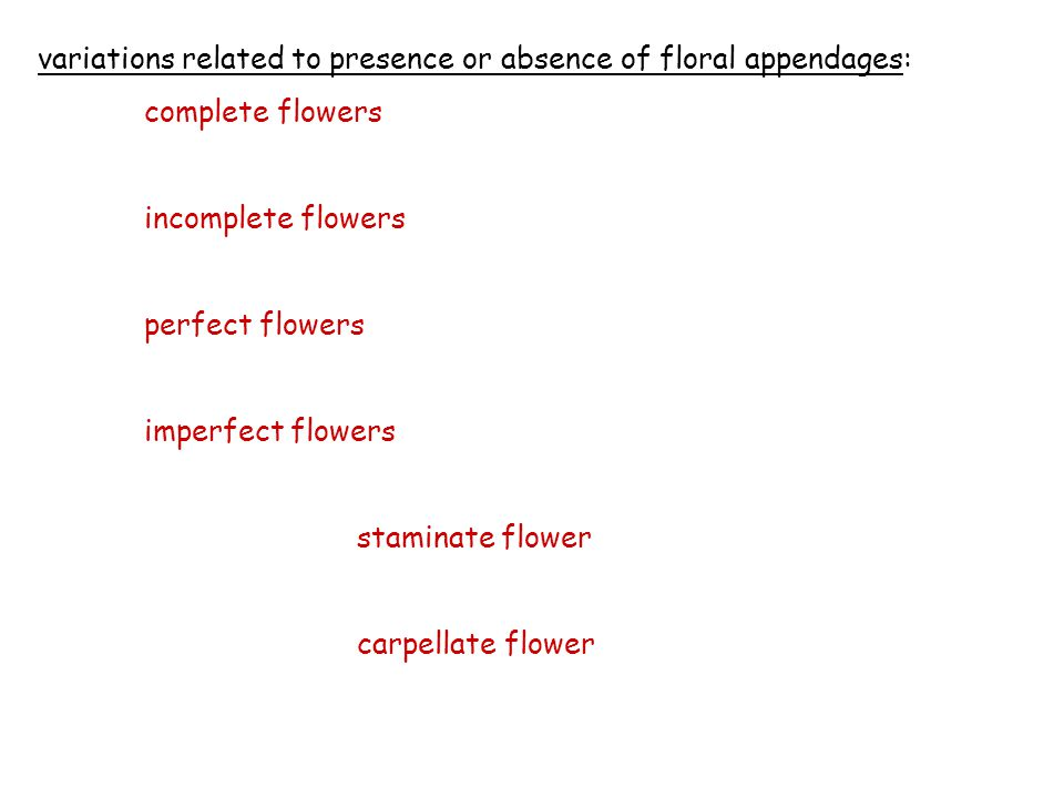 variations related to presence or absence of floral appendages: complete flowers incomplete flowers perfect flowers imperfect flowers staminate flower