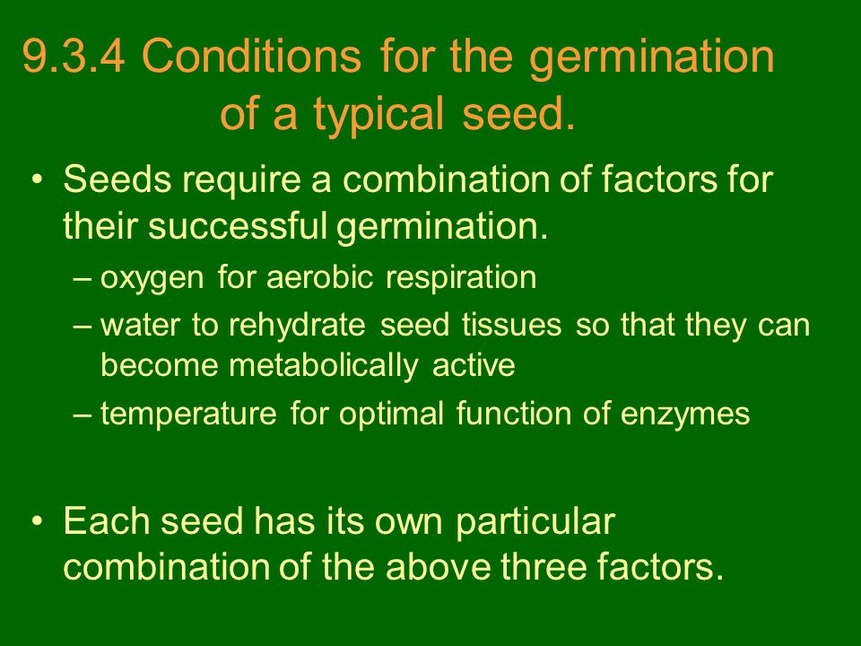 9.3.4 Conditions for the germination of a typical seed. Seeds require a combination of factors for their successful germination. –oxygen for aerobic r
