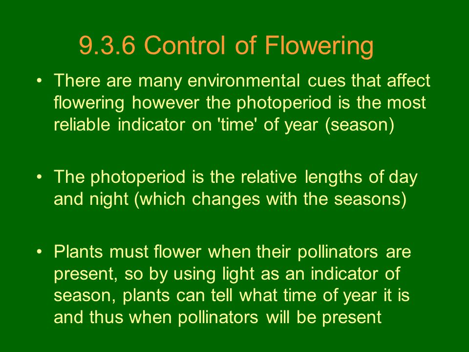 9.3.6 Control of Flowering There are many environmental cues that affect flowering however the photoperiod is the most reliable indicator on 'time' of
