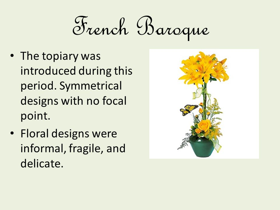 French Baroque The topiary was introduced during this period. Symmetrical designs with no focal point. Floral designs were informal, fragile, and deli