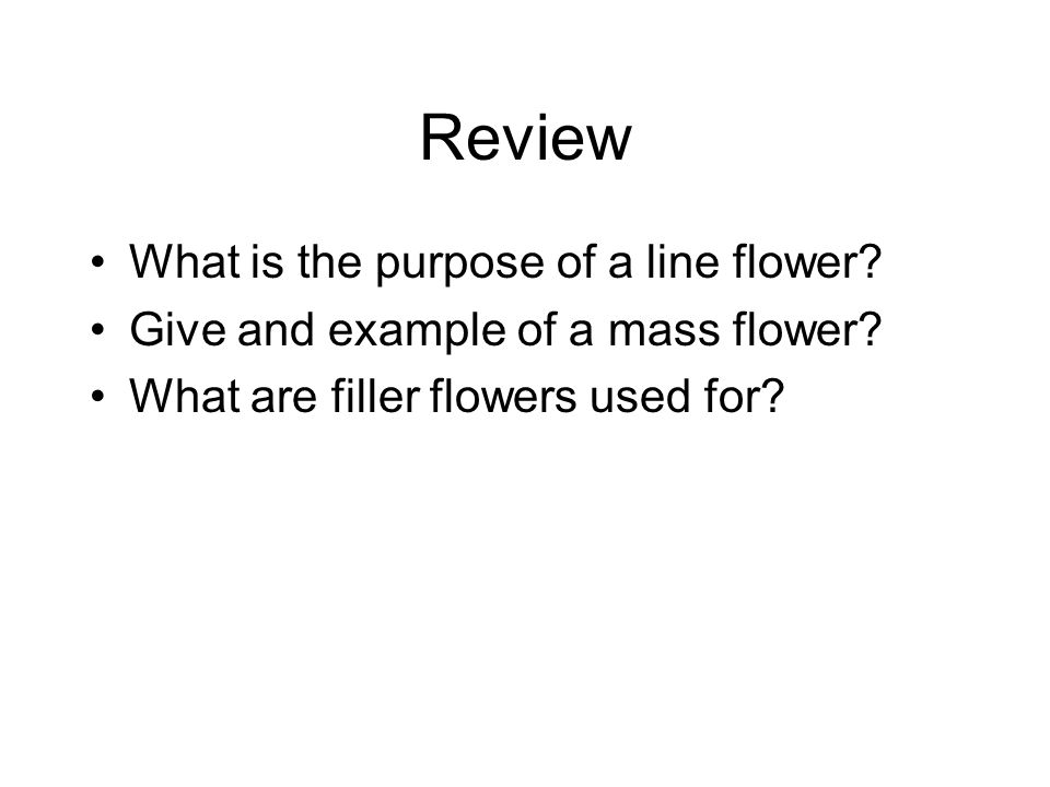 Review What is the purpose of a line flower? Give and example of a mass flower? What are filler flowers used for?