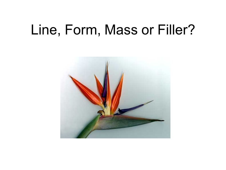 Line, Form, Mass or Filler?
