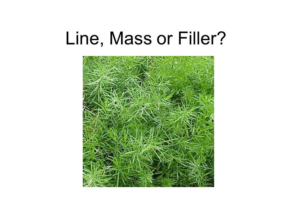Line, Mass or Filler?