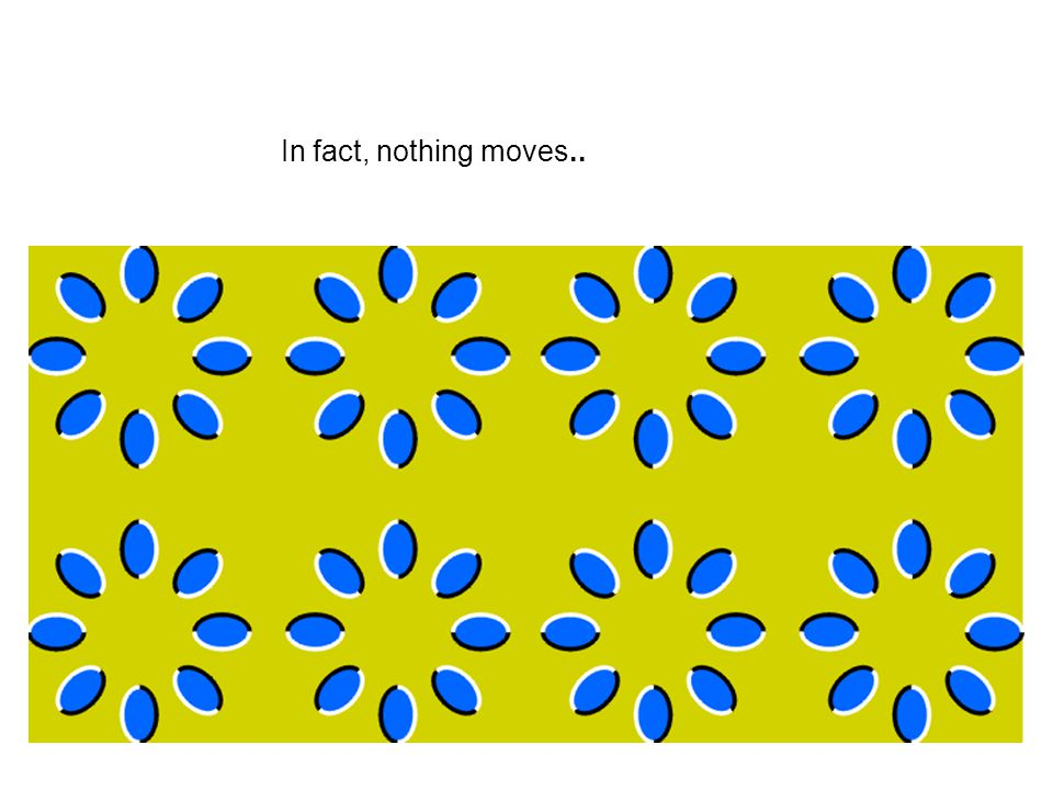 In fact, nothing moves..