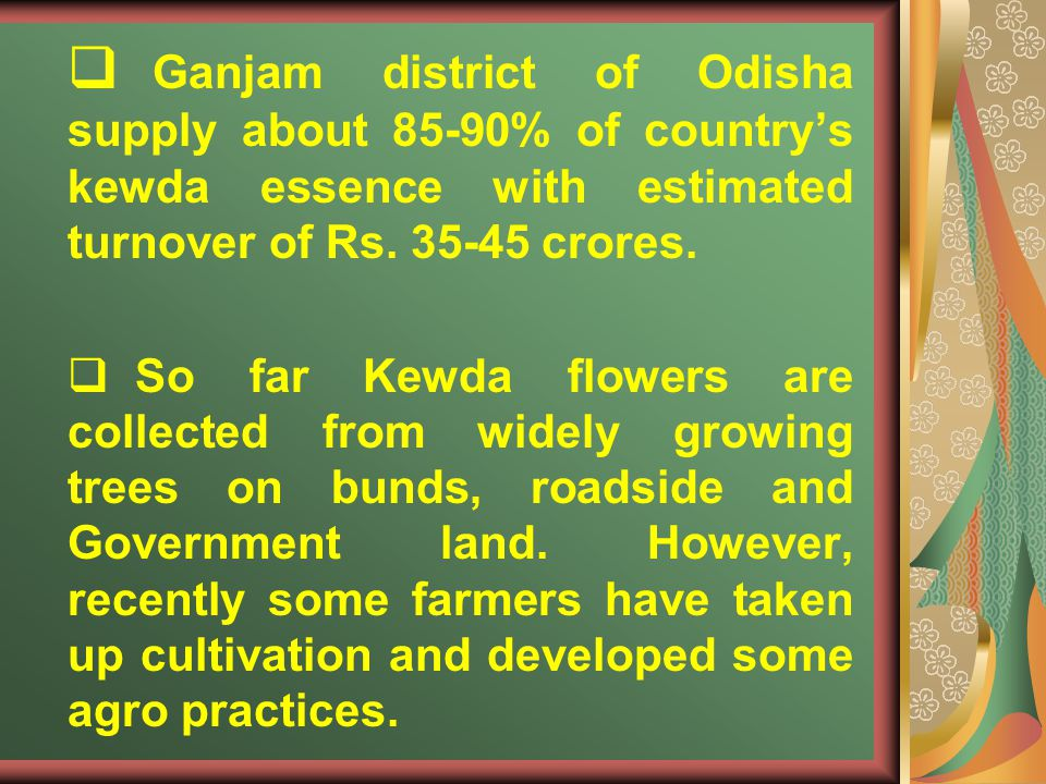 Ganjam district of Odisha supply about 85-90% of countrys kewda essence with estimated turnover of Rs. 35-45 crores. So far Kewda flowers are collecte