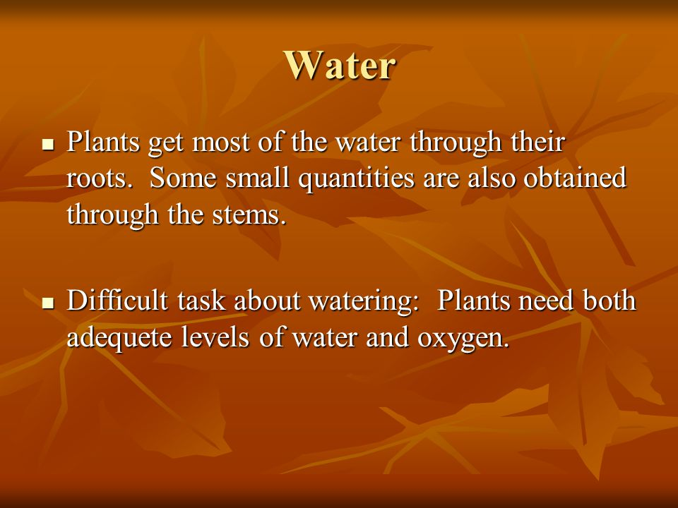 Water Plants get most of the water through their roots. Some small quantities are also obtained through the stems. Plants get most of the water throug