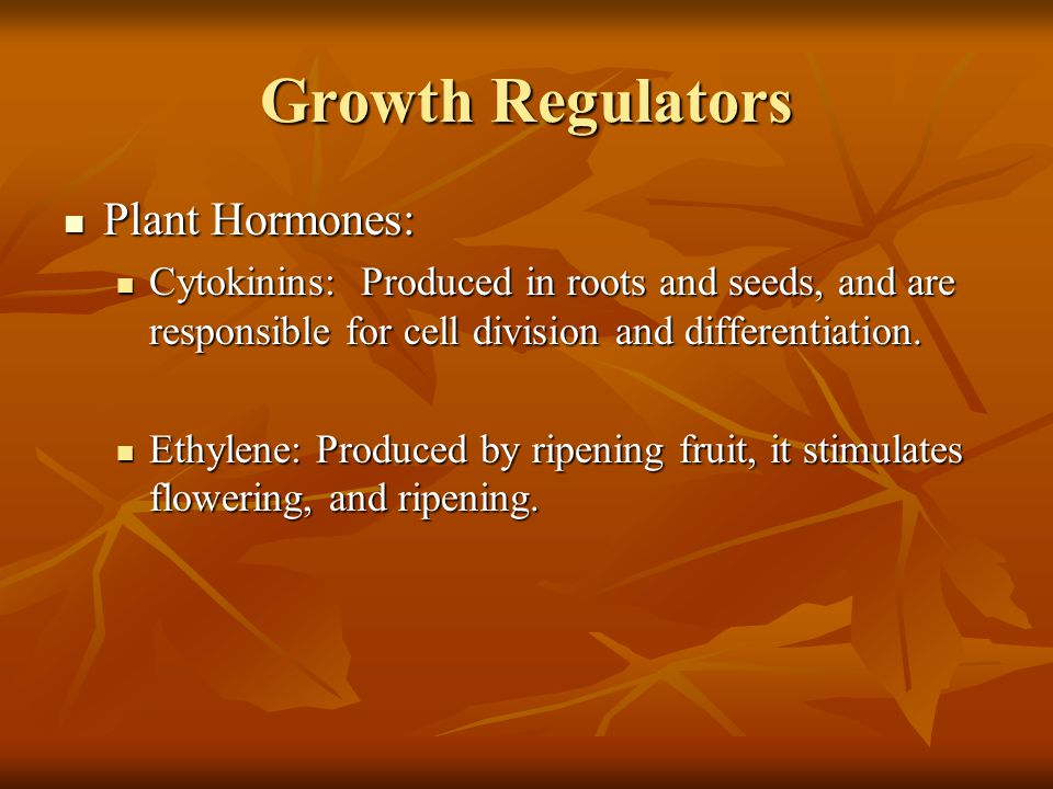 Growth Regulators Plant Hormones: Plant Hormones: Cytokinins: Produced in roots and seeds, and are responsible for cell division and differentiation.