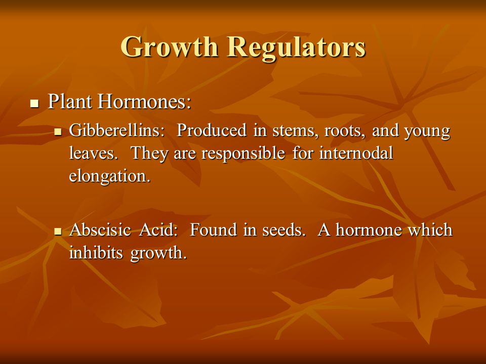 Growth Regulators Plant Hormones: Plant Hormones: Gibberellins: Produced in stems, roots, and young leaves. They are responsible for internodal elonga