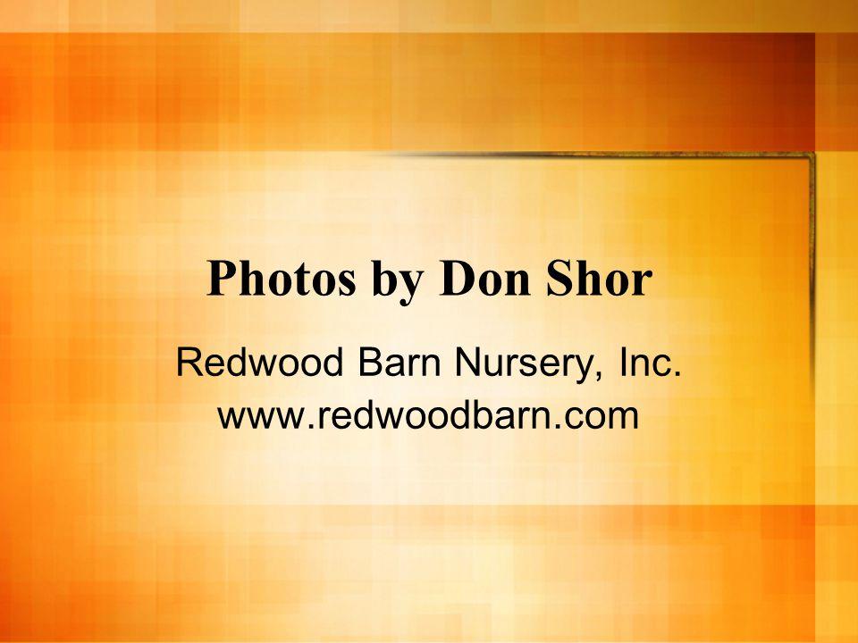 Photos by Don Shor Redwood Barn Nursery, Inc. www.redwoodbarn.com