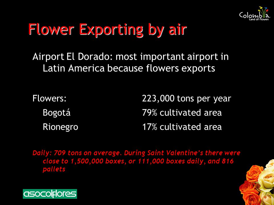 Flower Exporting by air Airport El Dorado: most important airport in Latin America because flowers exports Flowers:223,000 tons per year Bogotá79% cultivated area Rionegro17% cultivated area Daily: 709 tons on average.