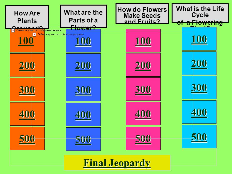 5,4 Answer: (C) flowering plants Dicot seeds are _______.