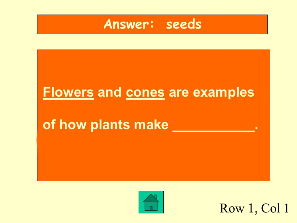 Row 1, Col 1 Answer: seeds Flowers and cones are examples of how plants make ___________.