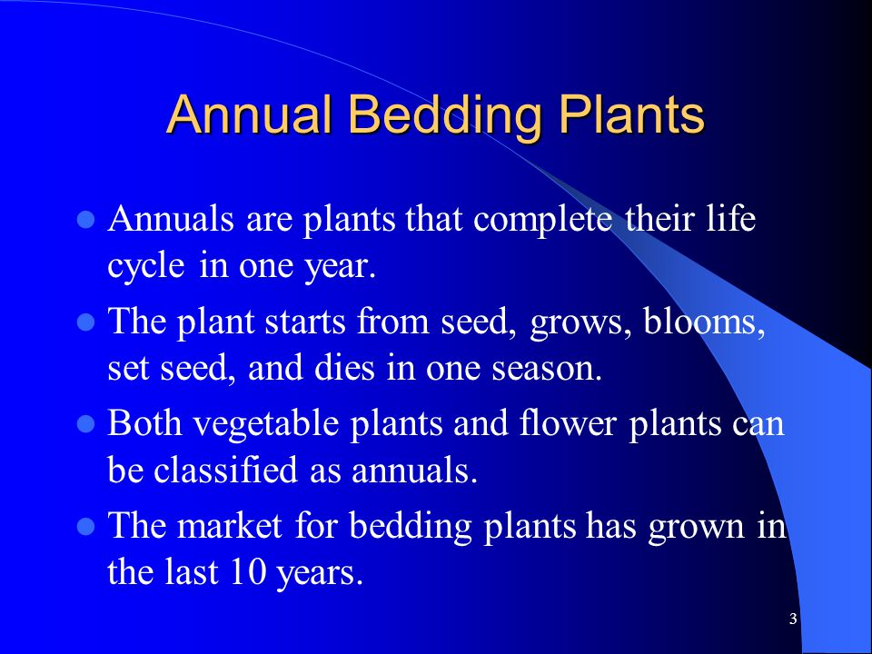 3 Annual Bedding Plants Annuals are plants that complete their life cycle in one year.