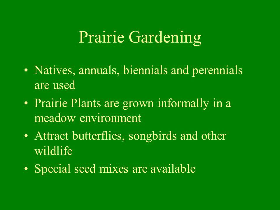 Prairie Gardening Natives, annuals, biennials and perennials are used Prairie Plants are grown informally in a meadow environment Attract butterflies,