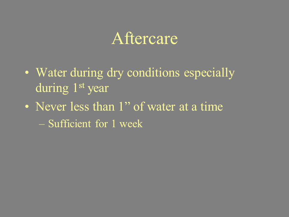Aftercare Water during dry conditions especially during 1 st year Never less than 1 of water at a time –Sufficient for 1 week