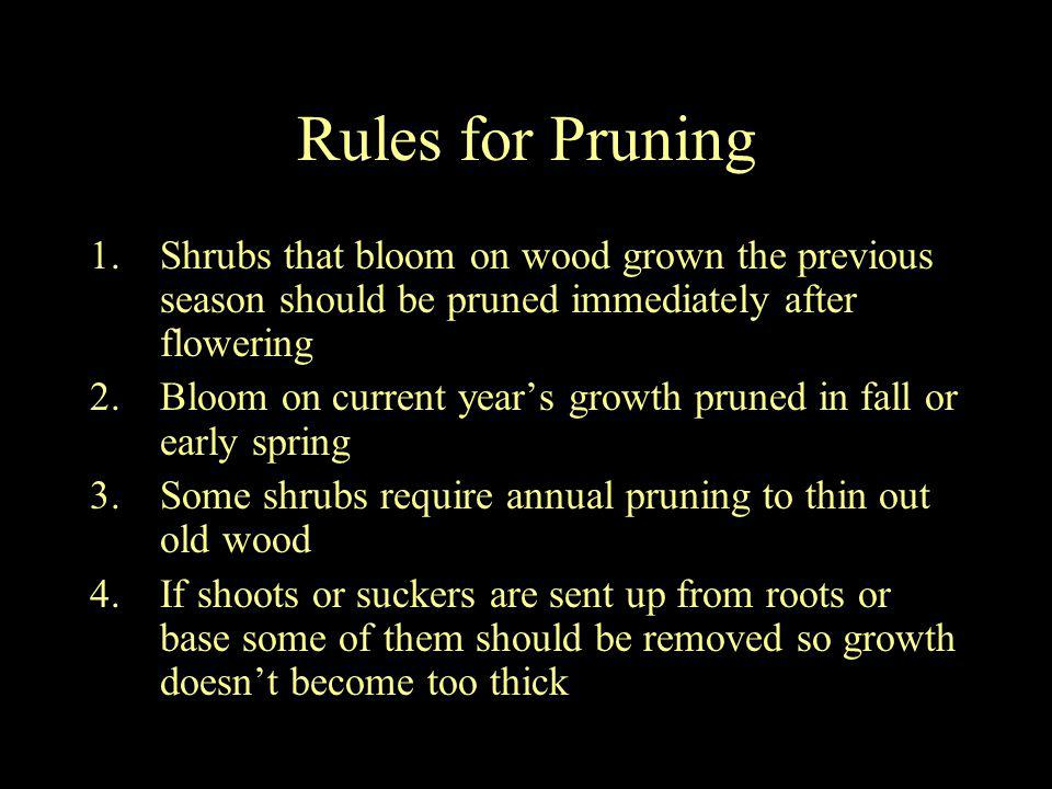 Rules for Pruning 1.Shrubs that bloom on wood grown the previous season should be pruned immediately after flowering 2.Bloom on current years growth p