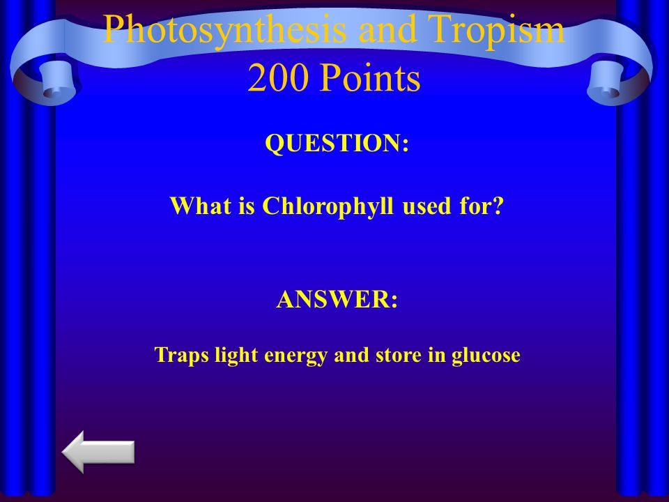 QUESTION: What is Chlorophyll used for.