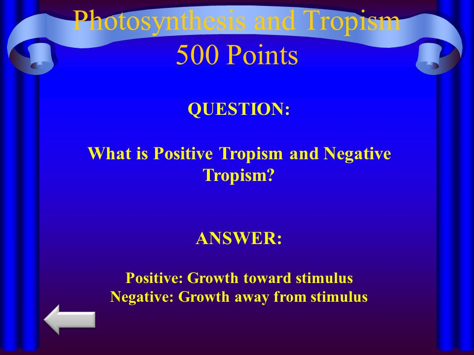 QUESTION: What is Positive Tropism and Negative Tropism.