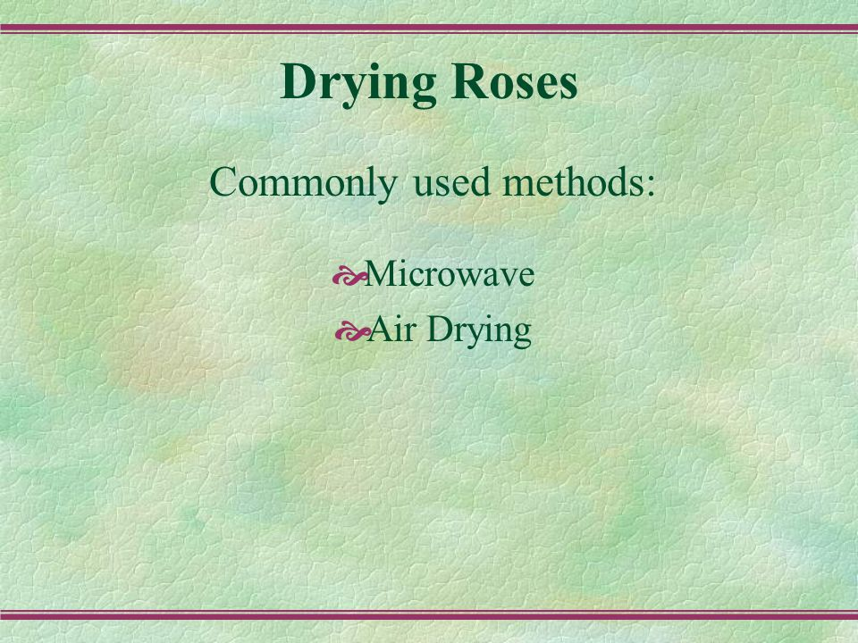 Drying Roses in Microwave Oven Examples of dried miniatures