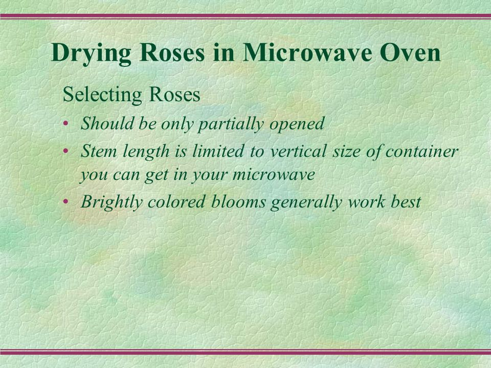 Drying Roses in Microwave Oven Selecting Roses Should be only partially opened Stem length is limited to vertical size of container you can get in your microwave Brightly colored blooms generally work best