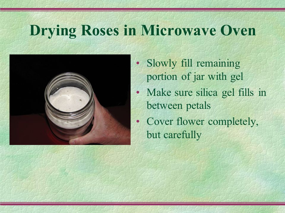 Drying Roses in Microwave Oven Slowly fill remaining portion of jar with gel Make sure silica gel fills in between petals Cover flower completely, but carefully