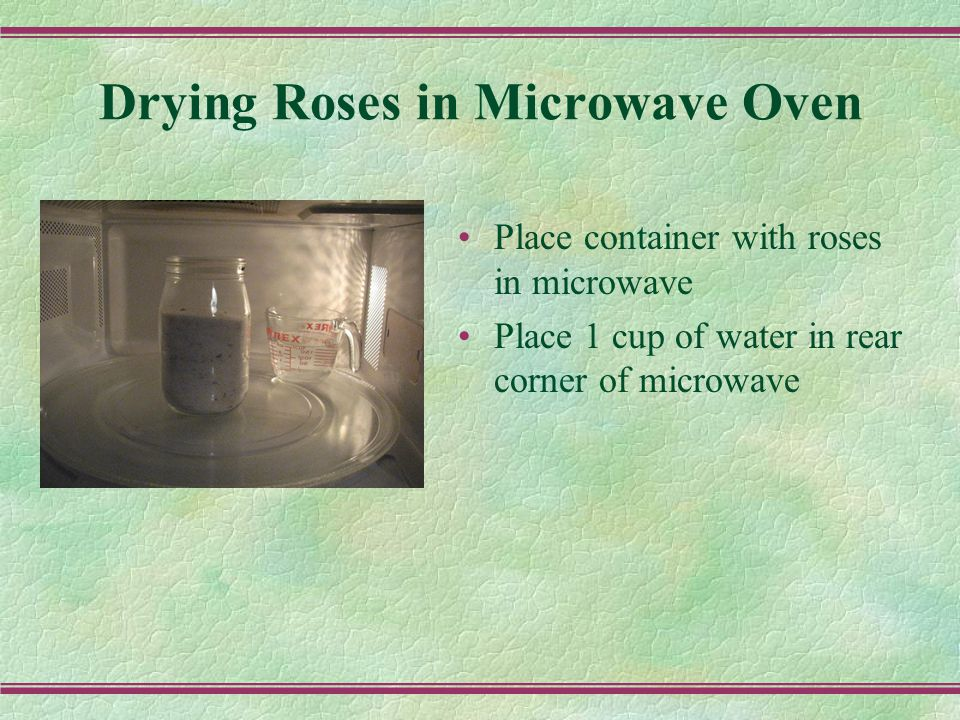 Drying Roses in Microwave Oven Place container with roses in microwave Place 1 cup of water in rear corner of microwave
