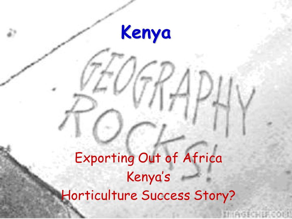 Kenya Exporting Out of Africa Kenyas Horticulture Success Story?