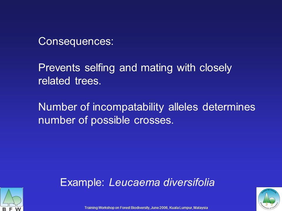 Consequences: Prevents selfing and mating with closely related trees.