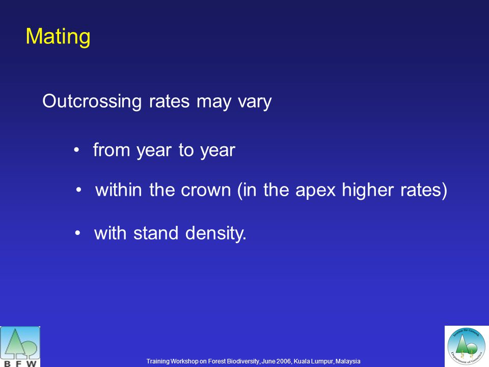 Mating Outcrossing rates may vary from year to year within the crown (in the apex higher rates) with stand density.