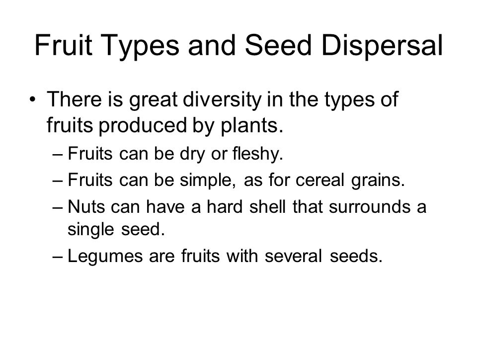 Fruit Types and Seed Dispersal There is great diversity in the types of fruits produced by plants. –Fruits can be dry or fleshy. –Fruits can be simple